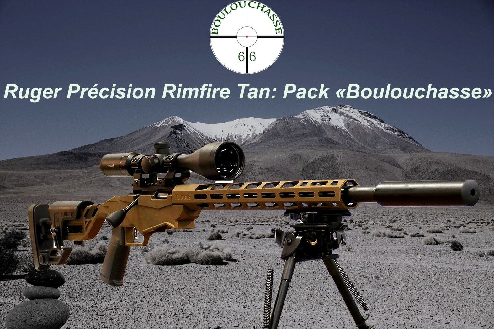 Ruger Précision Rimfire Tan- Pack Boulouchasse