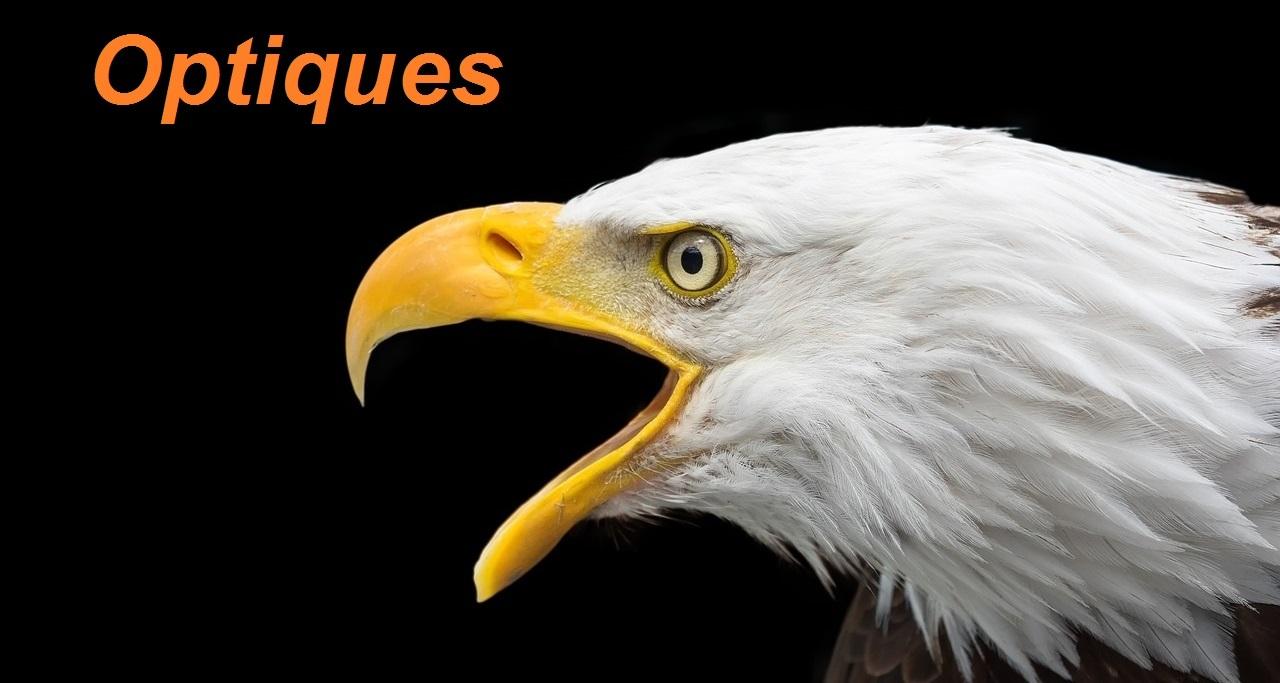 0f76ecb18a OPTIQUES - BOULOUCHASSE-LOISIRS NATURE
